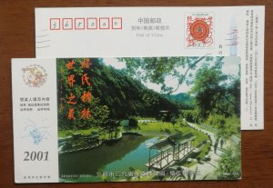 CN 01 Sanyuan Provincial Forest Park Castanopsis kawakamii scenic spot PSC