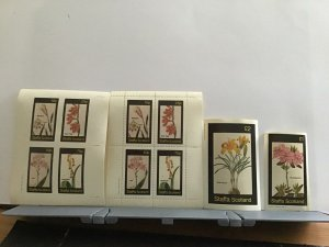 Staffa Scotland plant flowers Gold Crocus mint never hinged stamps  R25300
