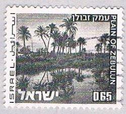 Israel Oasis 65 (AP100828)