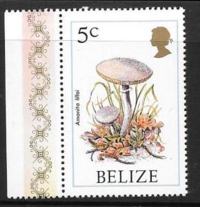 BELIZE SG962 1986 5c FUNGI MNH