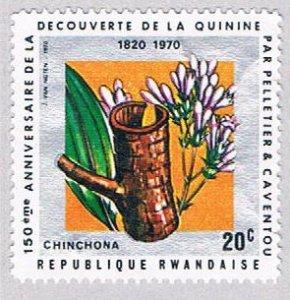 Rwanda Flowers 20 - wysiwyg (AP111517)
