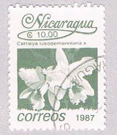 Nicaragua Hibiscus 10 - pickastamp (AP107923)