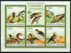 Comoros Birds on Stamps 2009 MNH Orioles Fruits Coconuts Fauna Nature 5v M/S