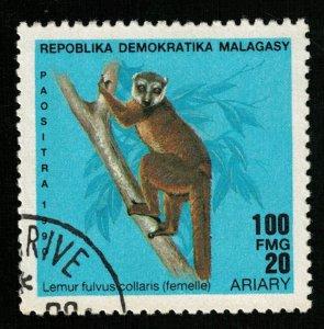Lemur, 100 FMG, 20 ARIARY (T-6620)