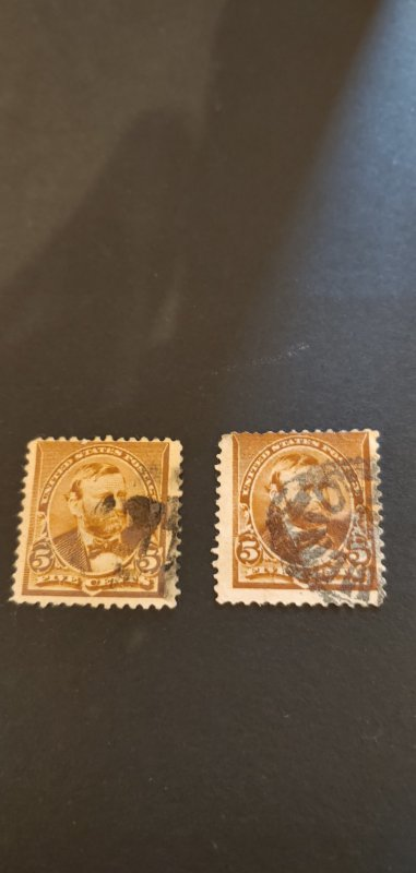 US #223 Used Lot of 2