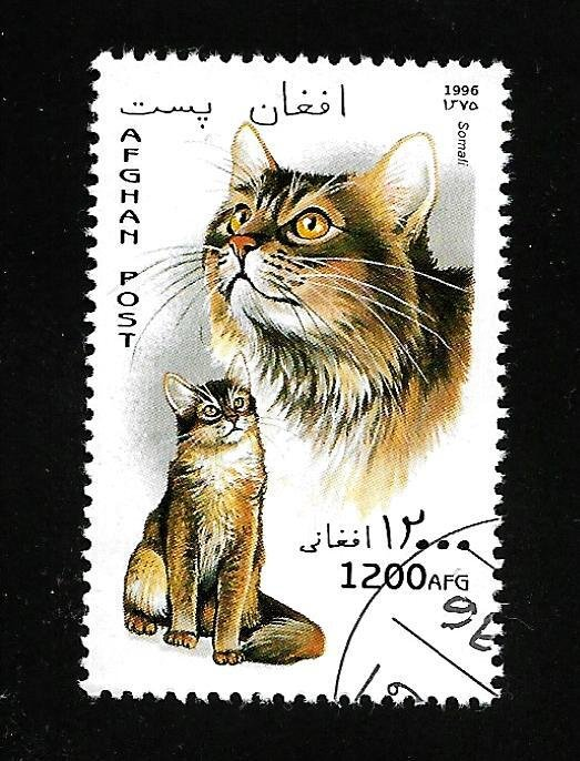 Afghanistan 1996 - U - Unlisted - Pic 6 *