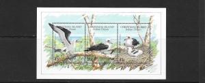 BIRDS - CHRISTMAS ISLAND #274