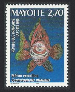 Mayotte Coral Hind Lagoon Fish 1v SG#88