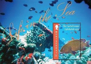 Montserrat - Life In The Sea - Souvenir Sheet MOT1205S