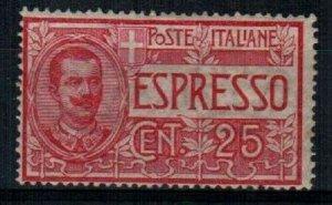 Italy Scott E1 Mint hinged [TE295]