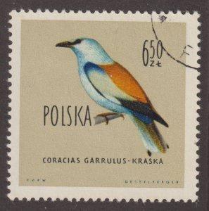Poland 946 European Roller 1960