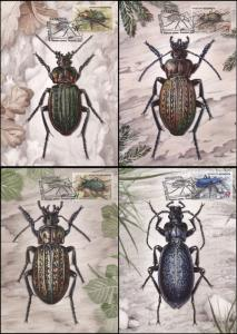 Belarus. 2016. Insects - Ground Beetles (Mint) Set of 4 Maxi Cards