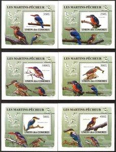 {107} Comoros 2009 Birds 6 S/S Deluxe MNH**
