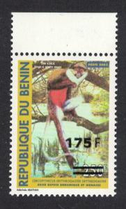 Benin Monkey Red-bellied Guenon Cercopithecus erythrogaster overprinted
