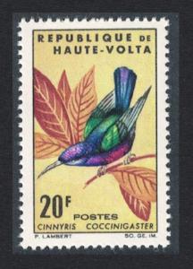 Upper Volta Splendid Sunbird bird 20f SG#156