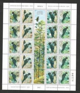 SERBIA-MNH-SHEET-FAUNA-BIRDS-WWF-PROTECTED ANIMAL SPECIES-2007.