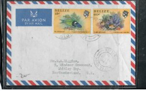 BELIZE COVER (P0807B) 1981 QEII FISH 15C+60C SITTEE RIVER A/M TO ENGLAND