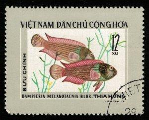 Fish, 12xu (T-5700)