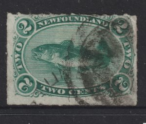 Newfoundland a used 2c Cod from 1876