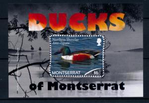 [40125] Montserrat 2012 Birds Vögel Oiseaux Ucelli  Ducks MNH Sheet