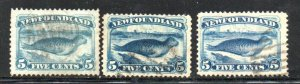 Newfoundland Sc 53-55 1880-1894 5c seal stamps used