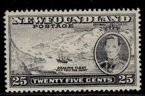 CANADA - Newfoundland GVI SG266, 25c slate, M MINT.