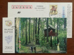 CN 02 Sanyuan Provincial Forest Park Castanopsis kawakamii scenic spot PSC