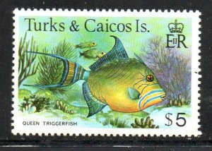 Turks & Caicos Sc 374 1979 $5 Queen Triggerfish stamp mint NH
