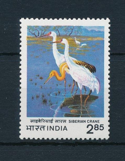 [38175] India 1983 Birds Vögel Oiseaux Ucelli   MNH