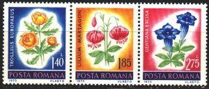 Romania. 1973. 3103-5 from the series. Flowers, flora. MVLH.
