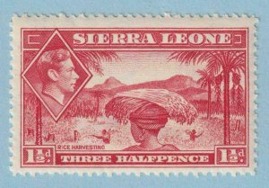 SIERRA LEONE 175 MINT NEVER HINGED OG ** NO FAULTS EXTRA FINE !