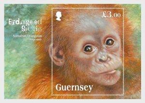 2014 Guernsey Sumatran Orangutan SS  (Scott 1240) MNH