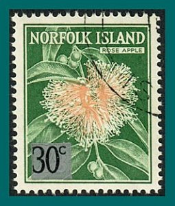 Norfolk Island 1966 Surcharge Rose Apple, used  #80,SG69
