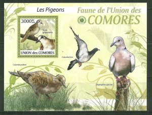 Comoro Islands MNH S/S Pigeons 2009