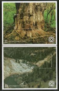 Palau 1997 UNESCO Forest Shirakami Sanchi & Yakushima Japan Trees Plant Sc 42...