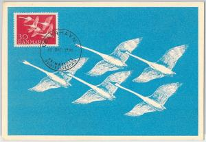 52198 - DENMARK -  MAXIMUM CARD - 1956  ANIMALS:  BIRDS