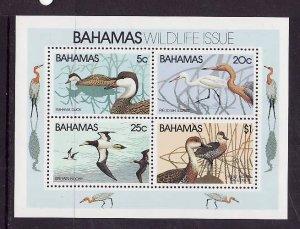 Bahamas-Sc#495a-unused NH sheet-Birds-Ducks-1981-
