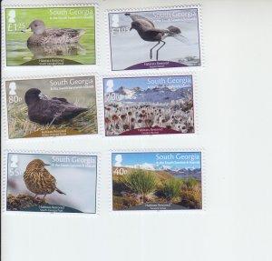 2019 South Georgia Birds Habitat Restoration (6) (Scott NA) MNH