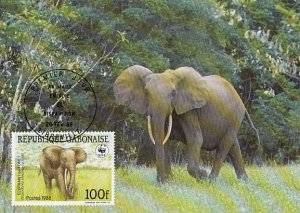 Gabon 1988 Maxicard Sc #637 100fr African forest elephant WWF