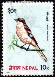Nepal 366 - Cto - 10p Northern Shrike (1979)