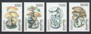 Belarus 1999 Mushrooms 4 MNH stamps