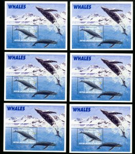 British Antarctic Territory Stamps # 248 Lot of 10 NH S/S Catalog Value $110.00