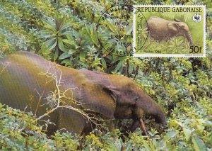 Gabon 1988 Maxicard Sc #636 50fr African forest elephant WWF