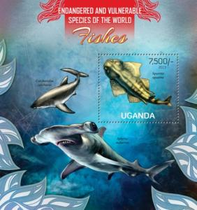 UGANDA 2013 SHEET FISHES MARINE LIFE ugn13111b