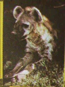 OMAN STAMP 1973 COLORFUL LOVELY WORLD ENDANGER ANIMALS-CTO MINI SHEET VF