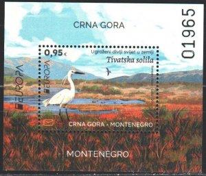 Montenegro. 2021. bl 27. Birds, fauna, europe-sept. MNH.