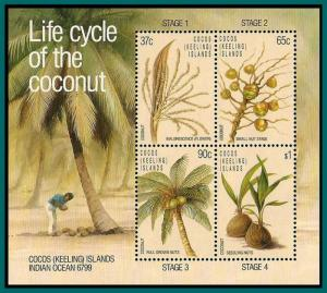 Cocos 1988 Coconut Life Cycle, MS MNH 176a,SGMS184