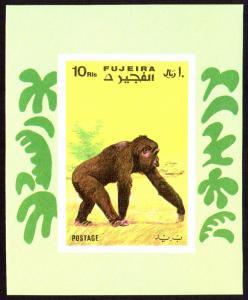 Fujeira Mi Block 80B (#791) mnh - 1971 monkey chimpanzee - imperf souvenir sheet