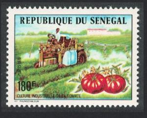 Senegal Tomato Production 1976 MNH SG#614