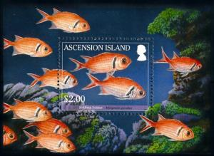 [66831] Ascension 2010 Marine Life Fish Souvenir Sheet MNH